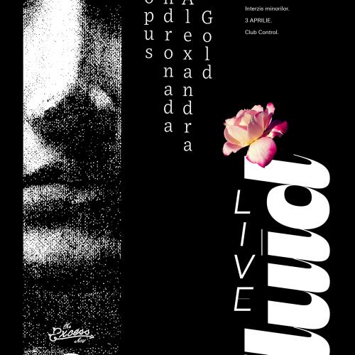 13_FLUID_live