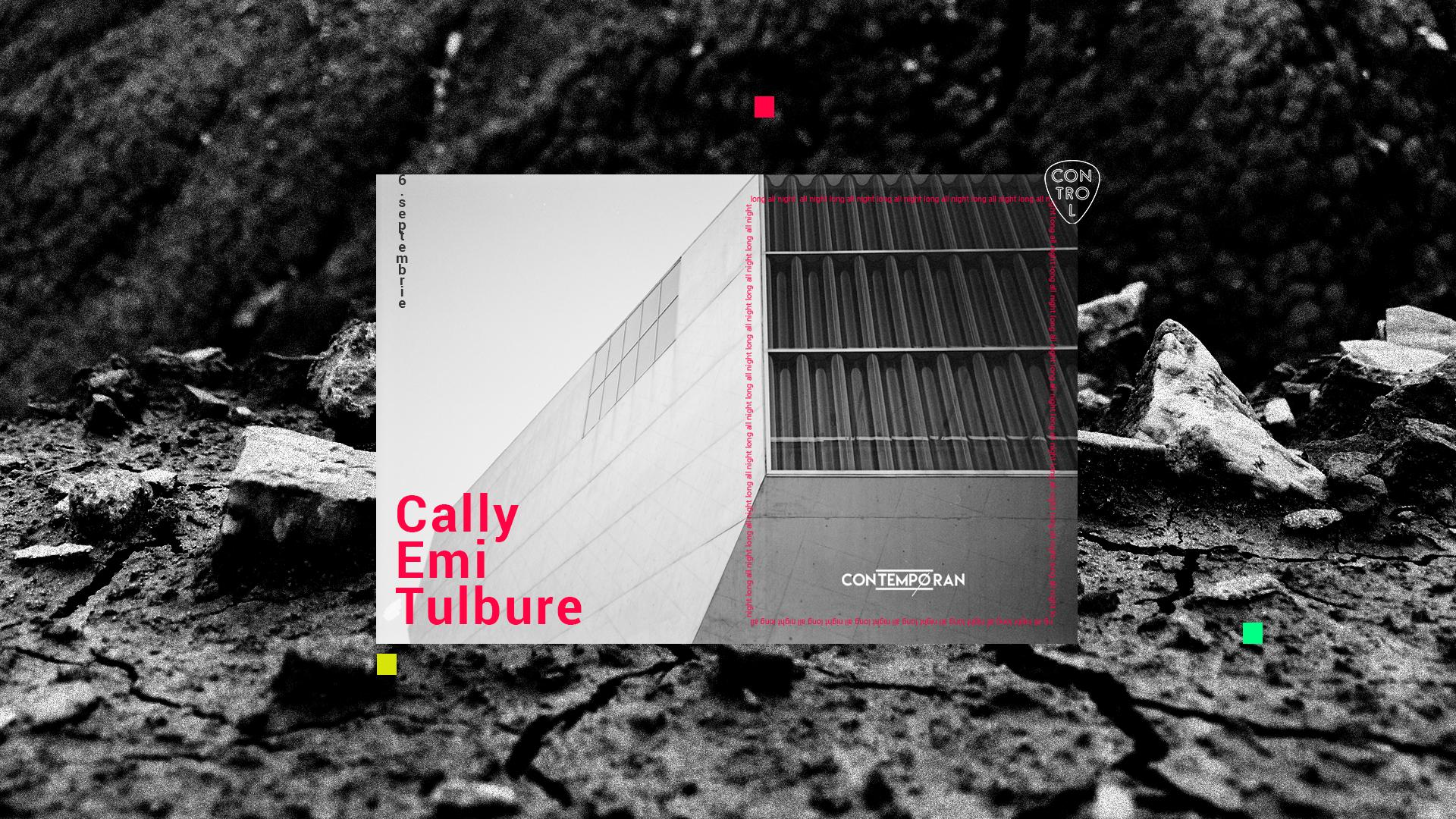 14_emi_tulbure_cally